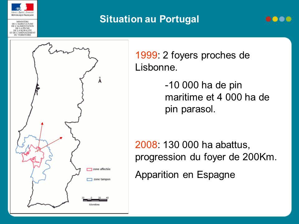 Situation au Portugal 1999: 2 foyers proches de Lisbonne. -10 000 ha de pin maritime et 4 000 ha de pin parasol. 2008: 130 000 ha abattus, progression