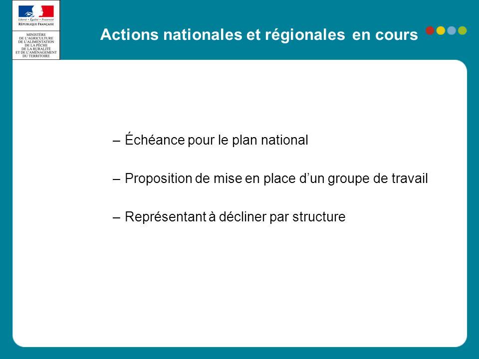 Actions nationales et régionales en cours –Échéance pour le plan national –Proposition de mise en place d'un groupe de travail –Représentant à décline