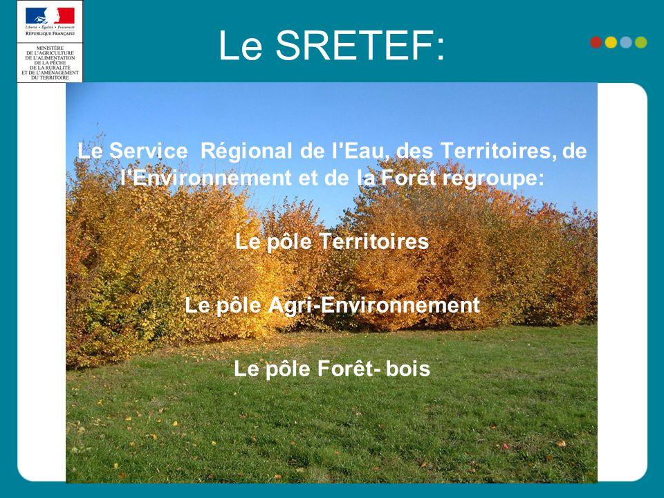 Le SRETEF: Le Service Régional de l'Eau, des Territoires, de l'Environnement et de la Forêt regroupe: Le pôle Territoires Le pôle Agri-Environnement L