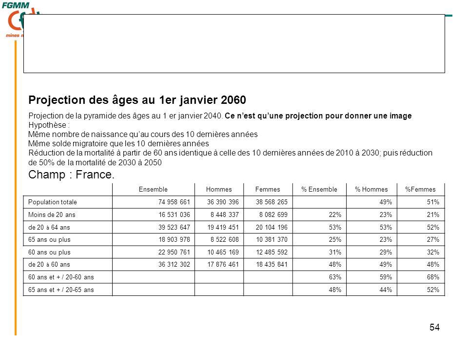 54 Projection des âges au 1er janvier 2060 Projection de la pyramide des âges au 1 er janvier 2040. Ce n'est qu'une projection pour donner une image H