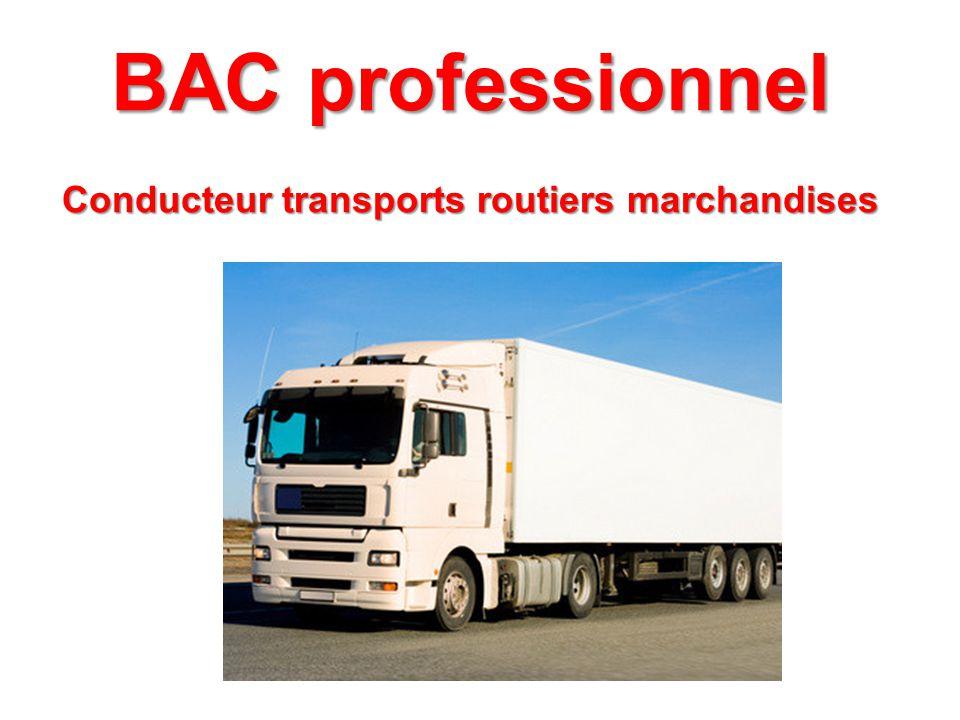 BAC professionnel Conducteur transports routiers marchandises