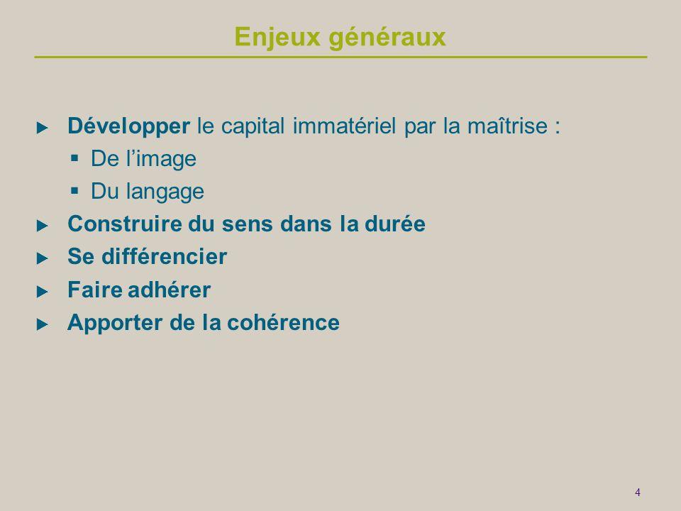 4 Enjeux généraux  Développer le capital immatériel par la maîtrise :  De l'image  Du langage  Construire du sens dans la durée  Se différencier