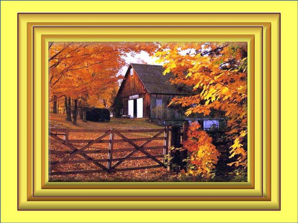 Quand les feuilles s'envolent au vent; Quand tu viens réanimer les couleurs Et les tableaux de mon jeune temps; Septembre, pour moi c'est du bonheur…