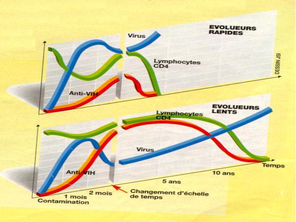 II - L 'AVANCEE INEXORABLE DE L 'INFECTION 2-1 : La contamination passe inaperçue.