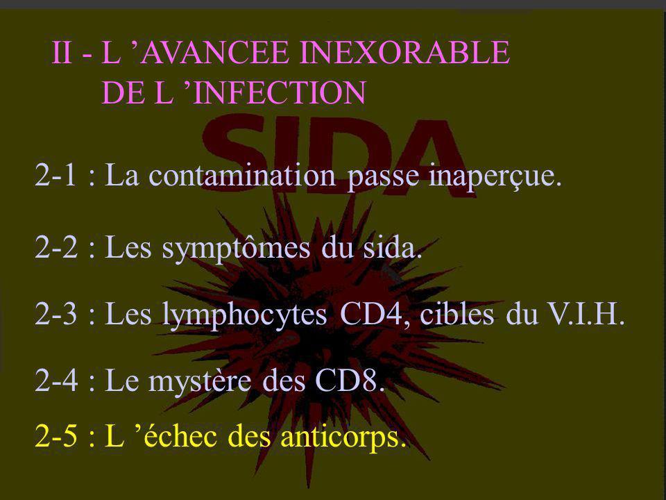 CD8 Destruction des CD4 infectés Action cytotoxique Freiner l 'activation des CD4 Action suppressive