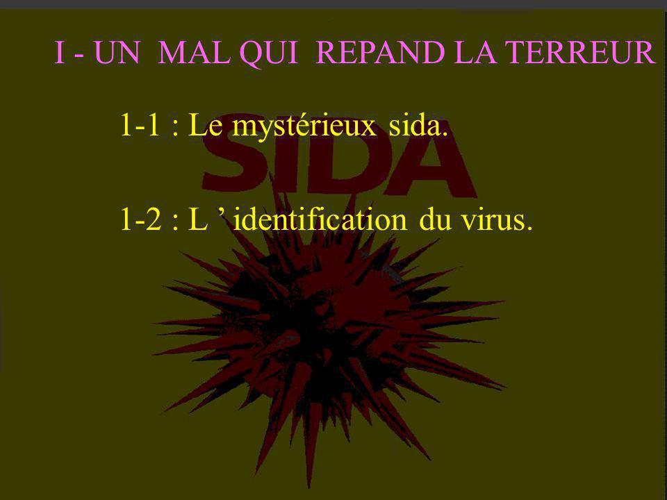 I - UN MAL QUI REPAND LA TERREUR L 'épidémie se propage dès 1981 aux Etats-Unis et en Europe. Le scandale du sang contaminé éclate en 1985. Le virus p