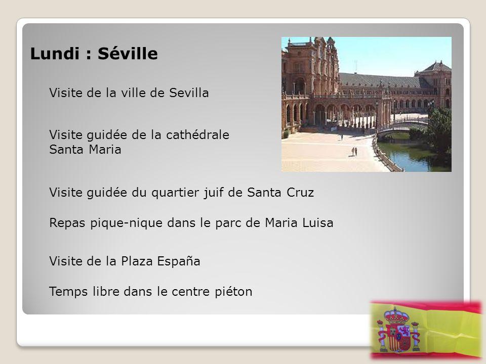 Lundi : Séville Visite de la ville de Sevilla Visite guidée de la cathédrale Santa Maria Visite guidée du quartier juif de Santa Cruz Repas pique-niqu