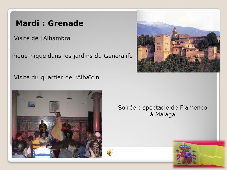 Mardi : Grenade Visite de l'Alhambra Pique-nique dans les jardins du Generalife Visite du quartier de l'Albaïcin Soirée : spectacle de Flamenco à Mala