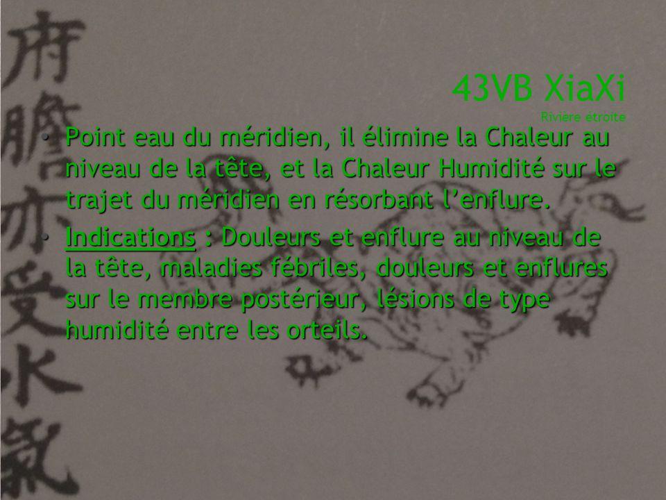 43VB XiaXi Rivière étroite • Point eau du méridien, il élimine la Chaleur au niveau de la tête, et la Chaleur Humidité sur le trajet du méridien en ré