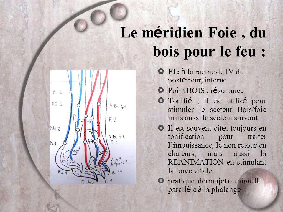 Le m é ridien Foie, du bois pour le feu :  F1: à la racine de IV du post é rieur, interne  Point BOIS : r é sonance  Tonifi é, il est utilis é pour