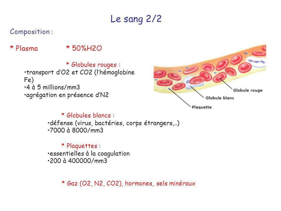 Le sang 2/2 Composition : * Plasma * 50%H2O * Globules rouges : •transport d'O2 et CO2 (l'hémoglobine Fe) •4 à 5 millions/mm3 •agrégation en présence