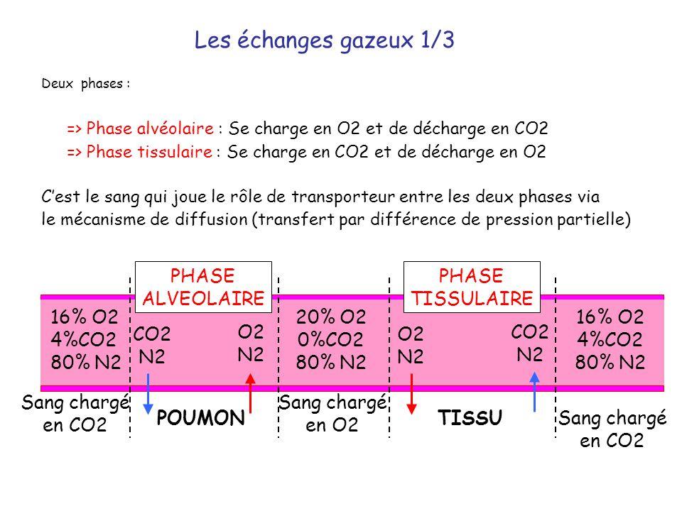 Deux phases : => Phase alvéolaire : Se charge en O2 et de décharge en CO2 => Phase tissulaire : Se charge en CO2 et de décharge en O2 C'est le sang qu