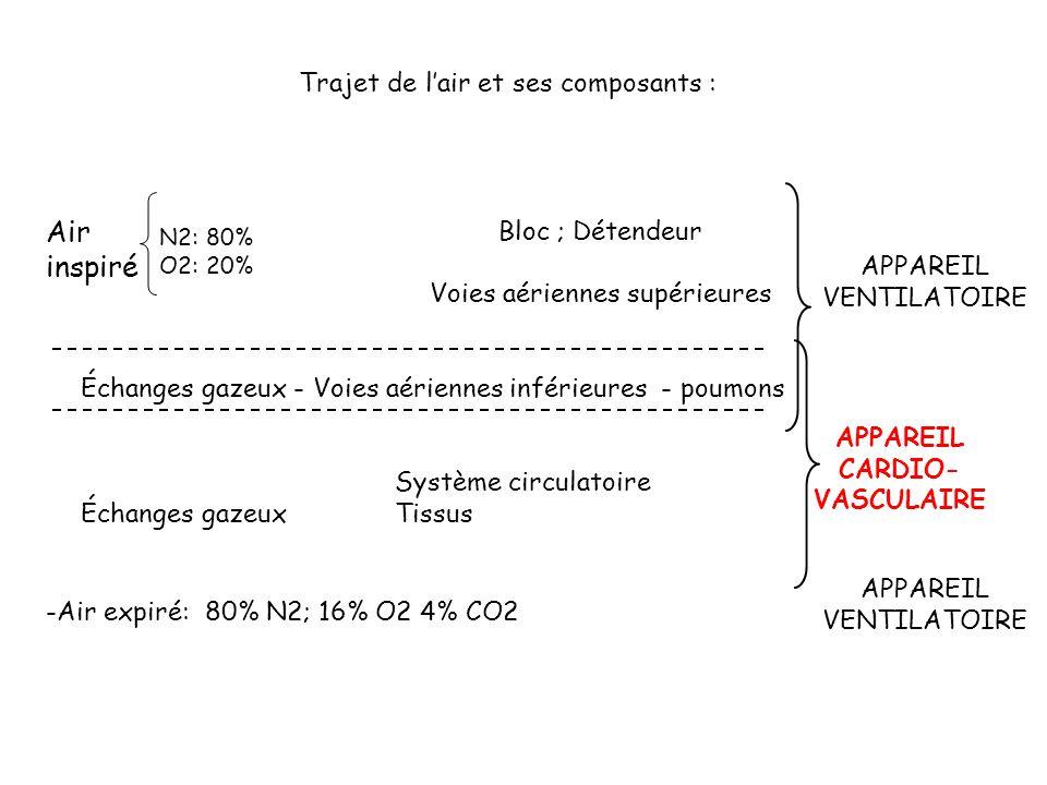 Bloc ; Détendeur Voies aériennes supérieures Échanges gazeux - Voies aériennes inférieures - poumons Système circulatoire Échanges gazeuxTissus Air in