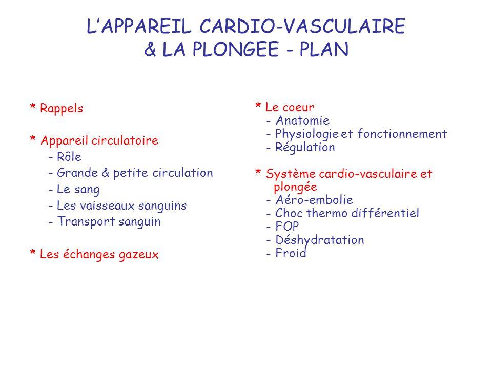 L'APPAREIL CARDIO-VASCULAIRE & LA PLONGEE - PLAN * Rappels * Appareil circulatoire - Rôle - Grande & petite circulation - Le sang - Les vaisseaux sang
