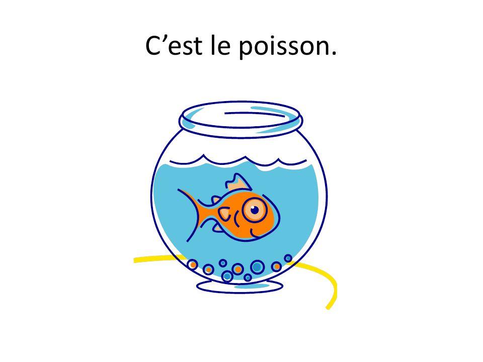 C'est le poisson.