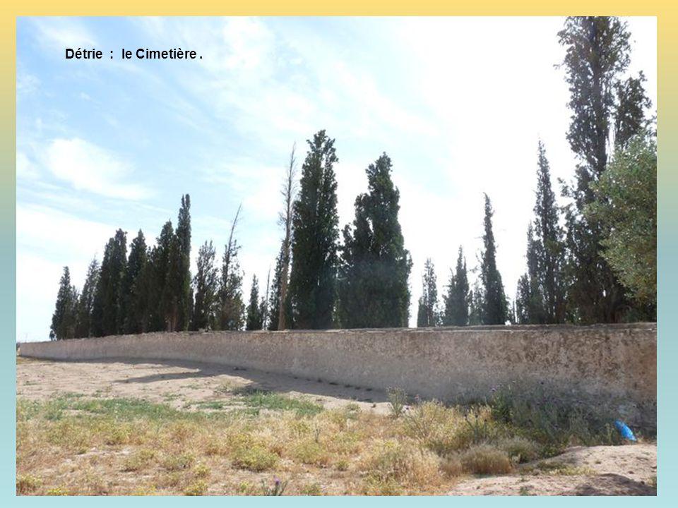 Détrie : … sur la Route du … Rail !!! Et … de quel côté voulez-vous aller ? Sidi-Bel-Abbès ou Tlemcem ? Alors … vous avez décidé ?