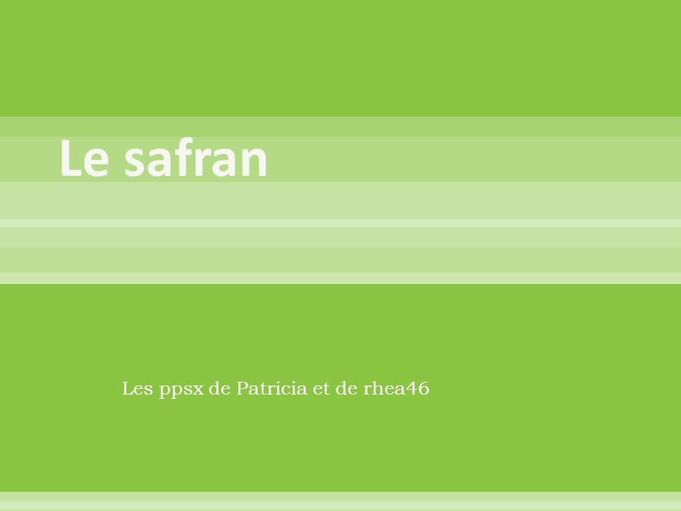 Les ppsx de Patricia et de rhea46