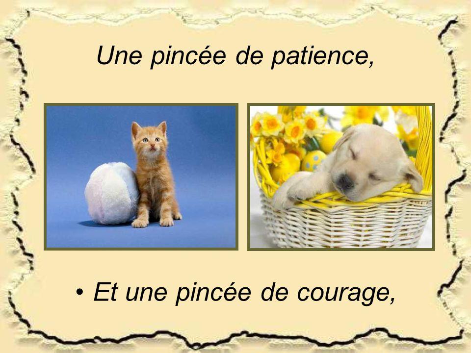 Une pincée de patience, •Et une pincée de courage,