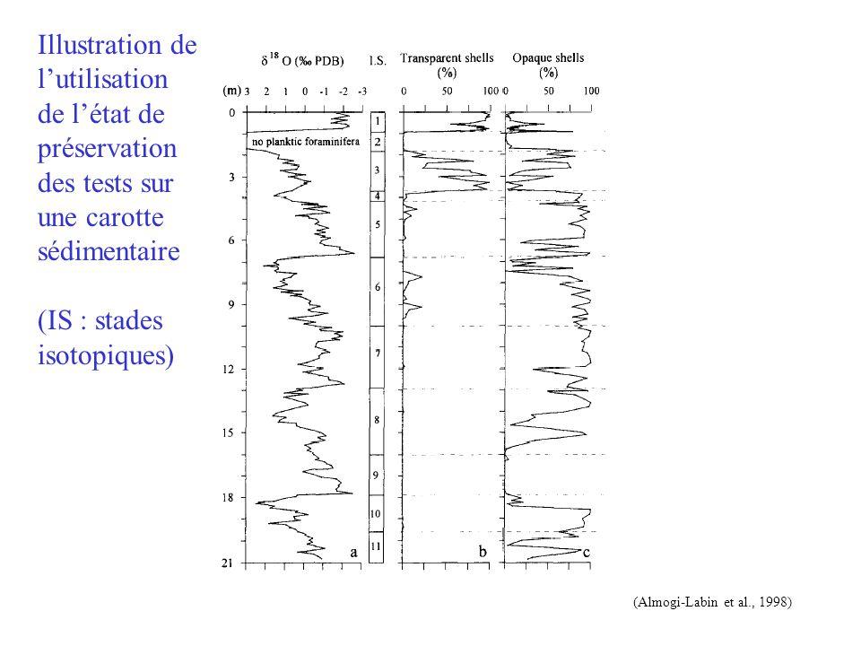 (Almogi-Labin et al., 1998) Illustration de l'utilisation de l'état de préservation des tests sur une carotte sédimentaire (IS : stades isotopiques)