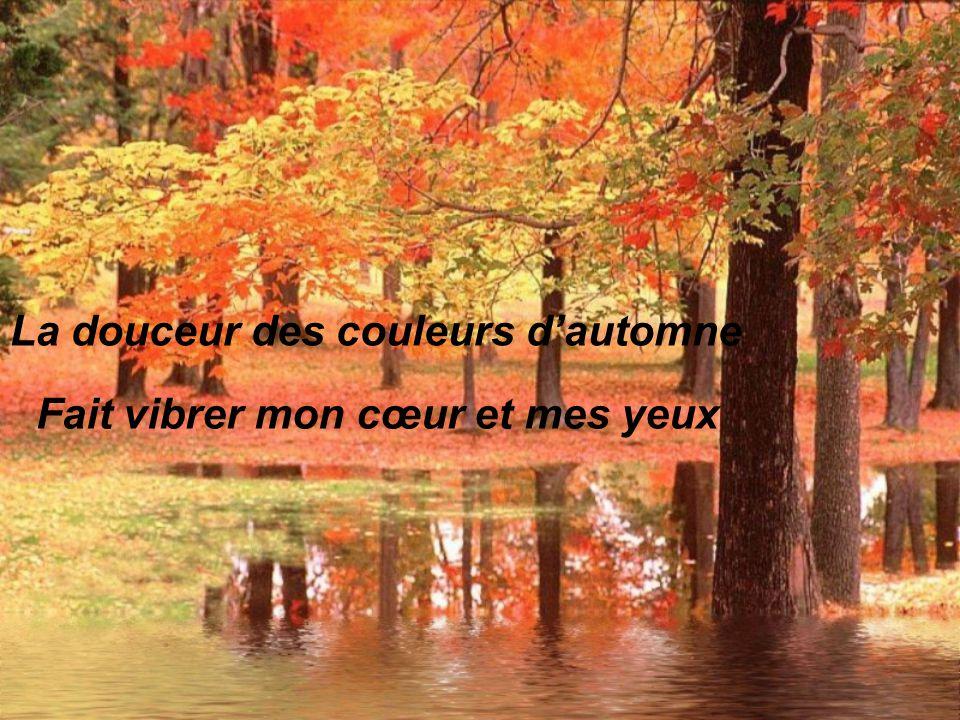 La douceur des couleurs d'automne Fait vibrer mon cœur et mes yeux