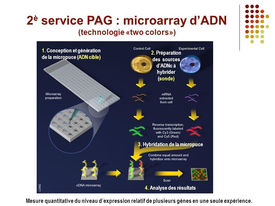 Domaines d'application de votre PAG (suite) SpotArray ScanArray • Fabrication de micropuces à ADN personnalisées (jusqu'à 20 000 gènes) • Impression oligo court (20-30mers) ou long (50mers), produit PCR (200-400pb) • Diverses lames fonctionnalisées (epoxy, amino, poly-L-lysine, aldéhyde) • Impression de protéines sur lame epoxy • Support technique Voir le document pour les modalités • Analyse et quantification du microarray • Transmission des résultats informative • Support technique Voir le document pour les modalités *14700 «spots» *diamètre 100µm *espacé de 250µm (centre- à-centre)