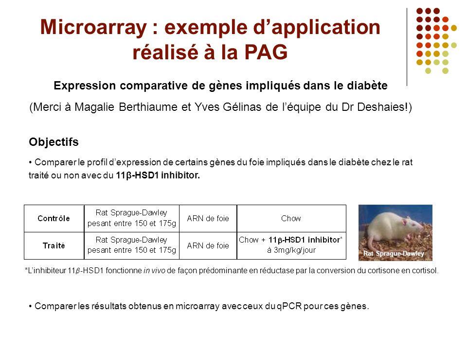 Gènes d'intérêt Gènes dont l'expression est à étudier (à imprimer sur la micropuce) 1.Gck : catalyse la phosphorylation du glucose.