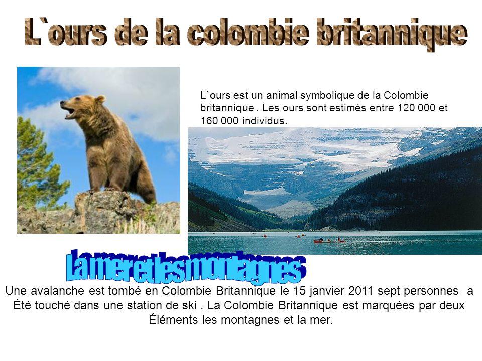 L`ours est un animal symbolique de la Colombie britannique. Les ours sont estimés entre 120 000 et 160 000 individus. Une avalanche est tombé en Colom
