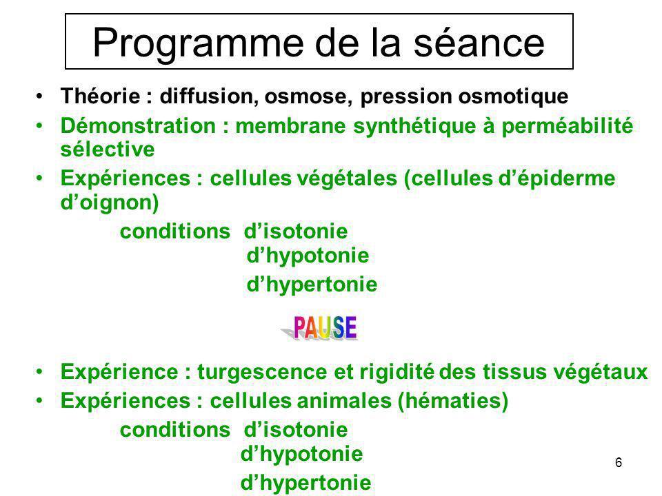 6 •Théorie : diffusion, osmose, pression osmotique •Démonstration : membrane synthétique à perméabilité sélective •Expériences : cellules végétales (cellules d'épiderme d'oignon) conditions d'isotonie d'hypotonie d'hypertonie •Expérience : turgescence et rigidité des tissus végétaux •Expériences : cellules animales (hématies) conditions d'isotonie d'hypotonie d'hypertonie Programme de la séance