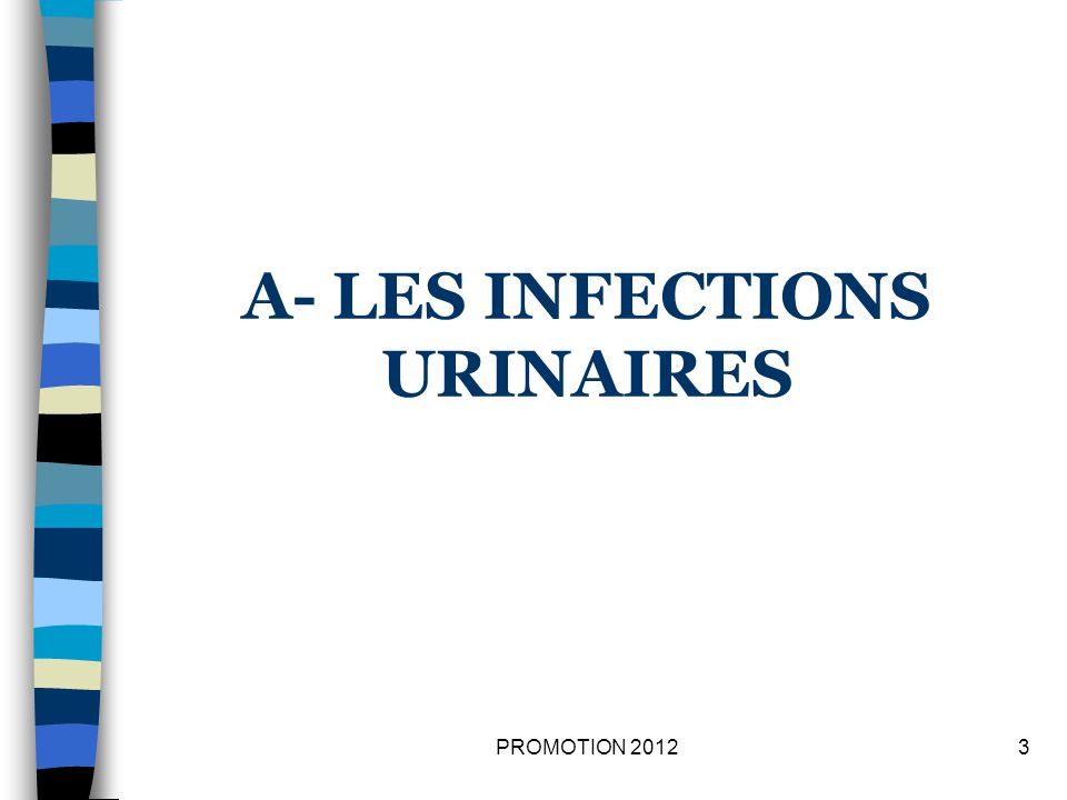 A- LES INFECTIONS URINAIRES 3PROMOTION 2012