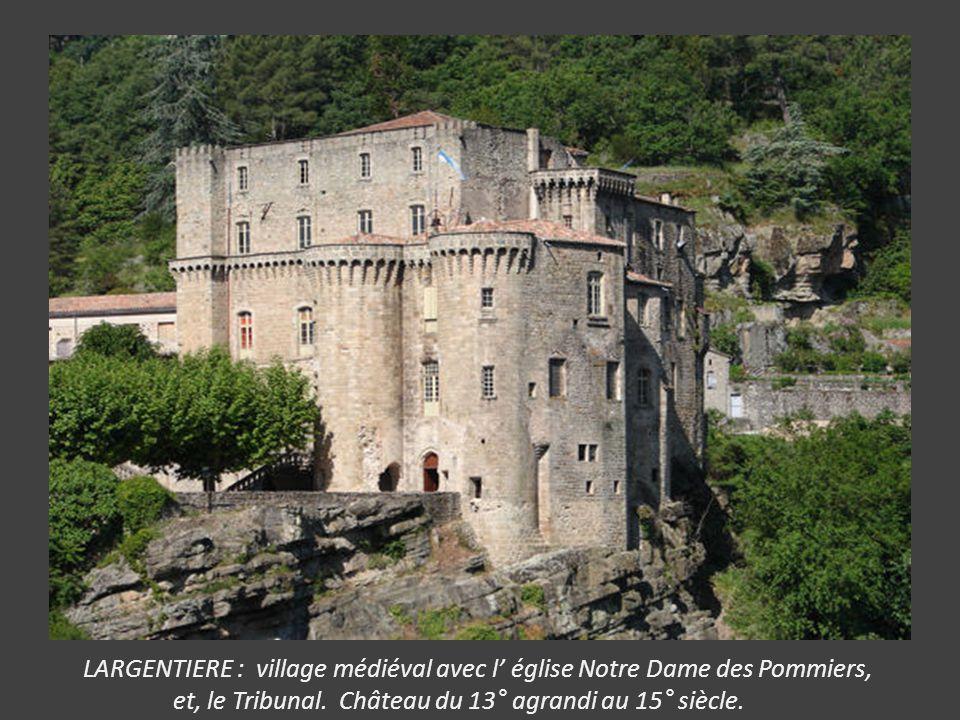 VOGUE : le site le plus visité avec son château surplombant la rivière, ses ruelles à arcades, passages voûtés, le donjon de la Tourasse (12 et 13°) e