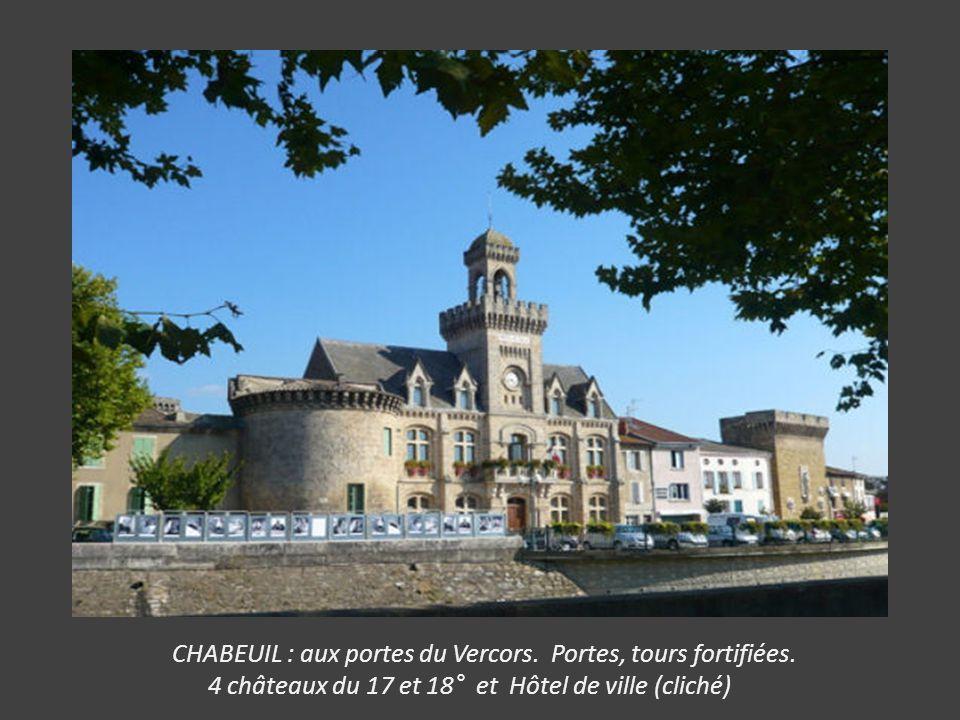 SUZE LA ROUSSE : Château ancienne propriété des Princes d' Orange, il abrite l' Université des Vins. Beau Parc boisé (La Garenne)