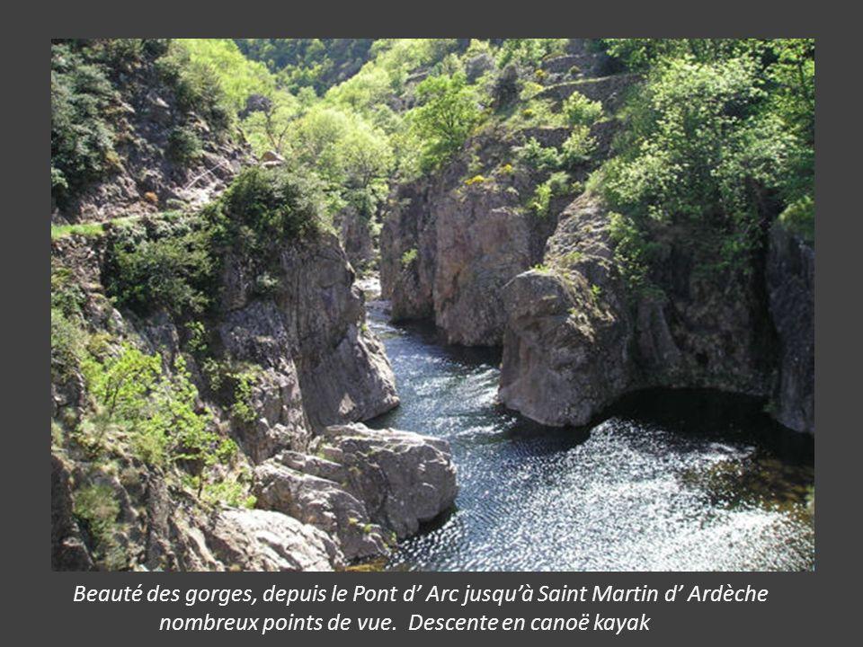 Beauté des gorges, depuis le Pont d' Arc jusqu'à Saint Martin d' Ardèche nombreux points de vue.