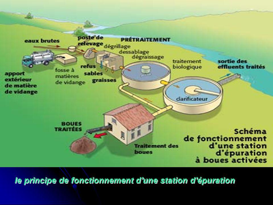 le principe de fonctionnement d'une station d'épuration