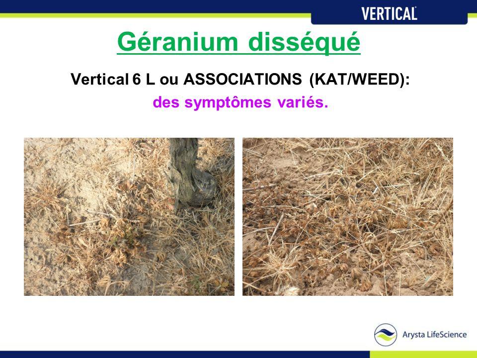 Géranium disséqué Vertical 6 L ou ASSOCIATIONS (KAT/WEED): des symptômes variés.