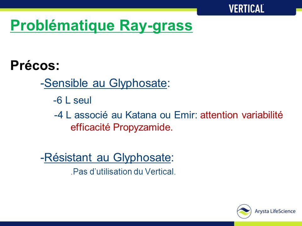 Problématique Ray-grass Précos: -Sensible au Glyphosate: -6 L seul -4 L associé au Katana ou Emir: attention variabilité efficacité Propyzamide. -Rési