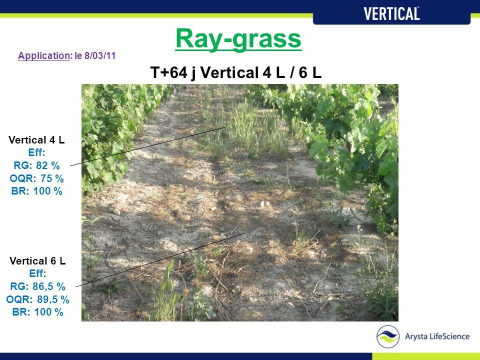 Ray-grass T+64 j Vertical 4 L / 6 L Vertical 4 L Eff: RG: 82 % OQR: 75 % BR: 100 % Vertical 6 L Eff: RG: 86,5 % OQR: 89,5 % BR: 100 % Application: le