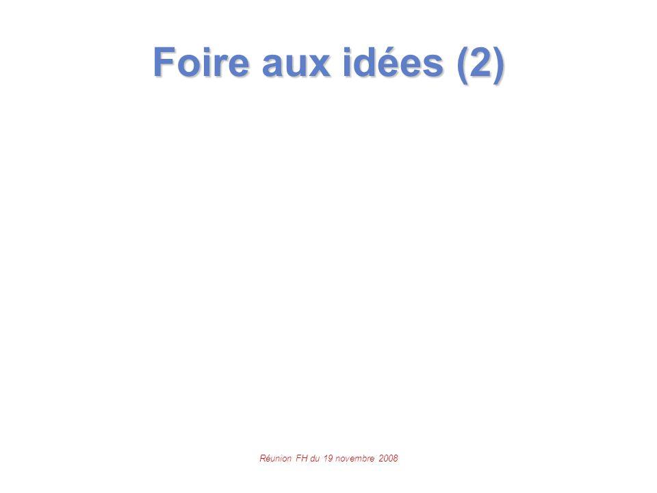 Réunion FH du 19 novembre 2008 Foire aux idées (2)