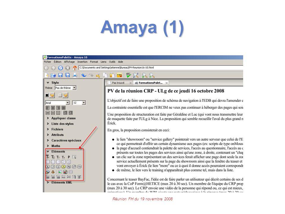Réunion FH du 19 novembre 2008 Amaya (1)