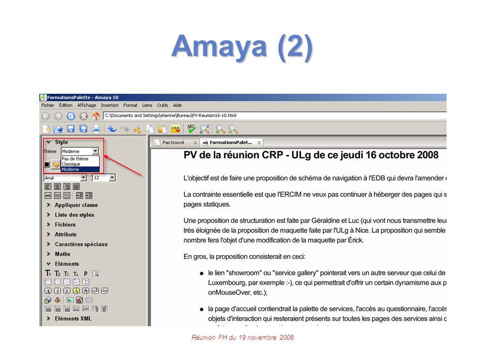 Réunion FH du 19 novembre 2008 Amaya (2)