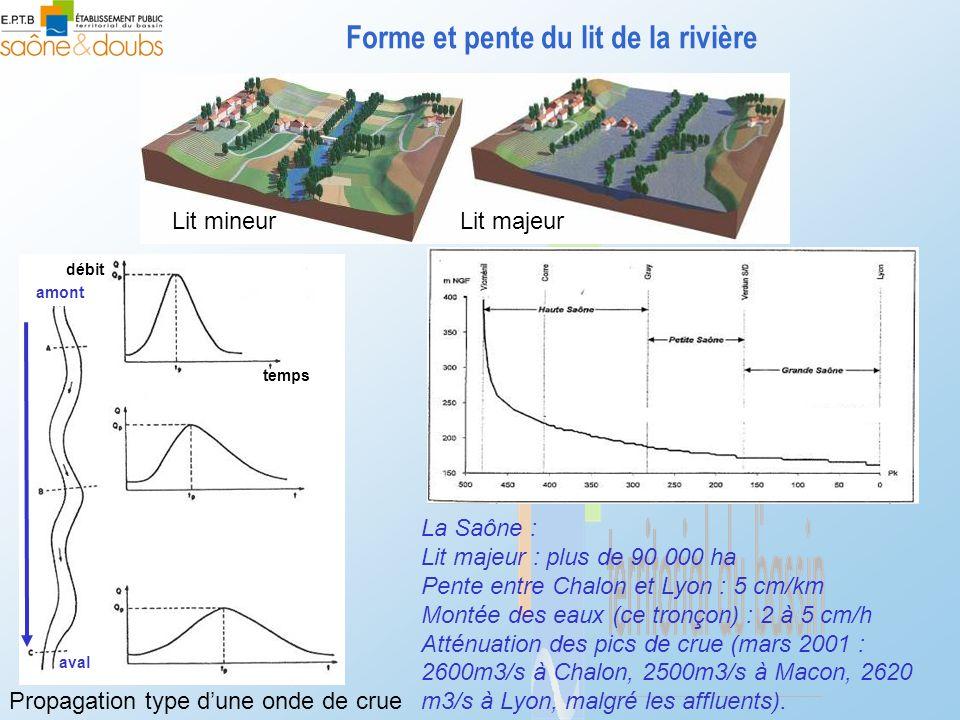 Forme et pente du lit de la rivière Lit mineurLit majeur La Saône : Lit majeur : plus de 90 000 ha Pente entre Chalon et Lyon : 5 cm/km Montée des eau