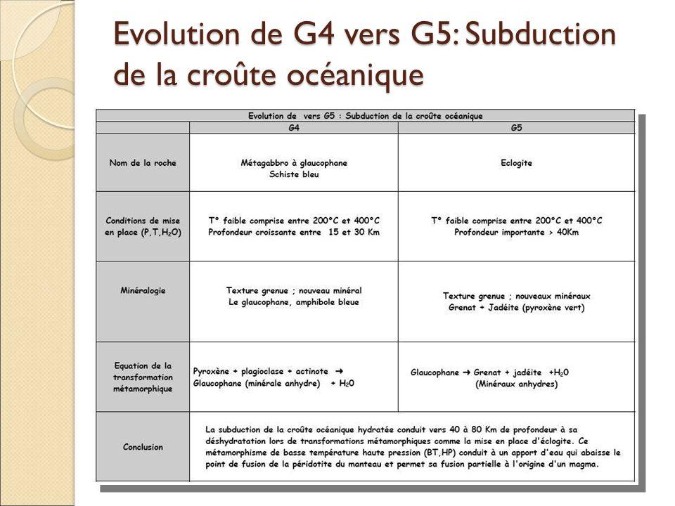Evolution de G4 vers G5: Subduction de la croûte océanique