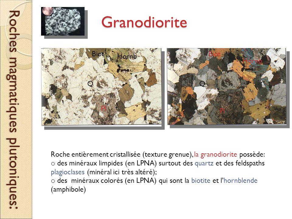 Granodiorite Roches magmatiques plutoniques : Roche entièrement cristallisée (texture grenue), la granodiorite possède: o des minéraux limpides (en LPNA) surtout des quartz et des feldspaths plagioclases (minéral ici très altéré); o des minéraux colorés (en LPNA) qui sont la biotite et l'hornblende (amphibole) Q Pl Biot Hornb Pl Q Biot Hornb