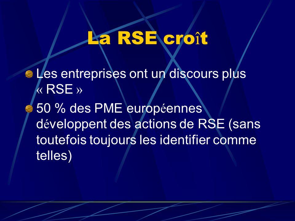 La RSE cro î t Les entreprises ont un discours plus « RSE » 50 % des PME europ é ennes d é veloppent des actions de RSE (sans toutefois toujours les i