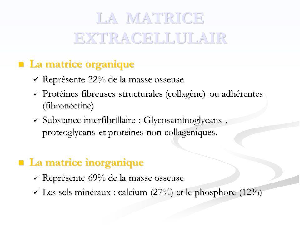 LA MATRICE EXTRACELLULAIR  La matrice organique  Représente 22% de la masse osseuse  Protéines fibreuses structurales (collagène) ou adhérentes (fibronéctine)  Substance interfibrillaire : Glycosaminoglycans, proteoglycans et proteines non collageniques.