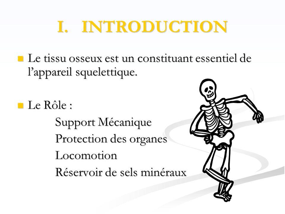 I.INTRODUCTION  Le tissu osseux est un constituant essentiel de l'appareil squelettique.