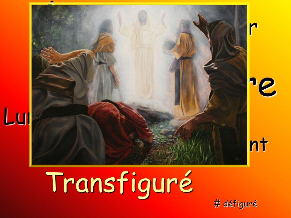 Blancheur Éclat Lumière Resplendissant Gloire Éblouissant Transfiguré # défiguré