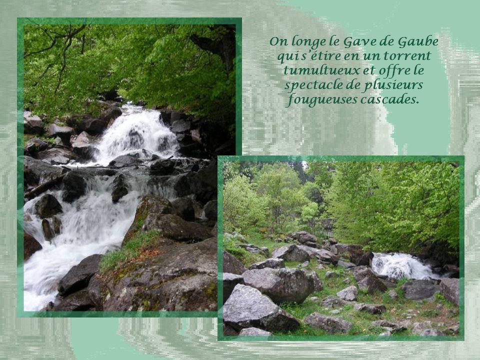 Plusieurs randonnées peuvent y être réalisées et il est possible d'emprunter un télésiège qui mène au lac de Gaube dans son cirque montagneux.