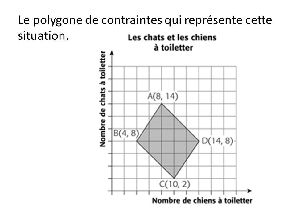 Le polygone de contraintes qui représente cette situation.