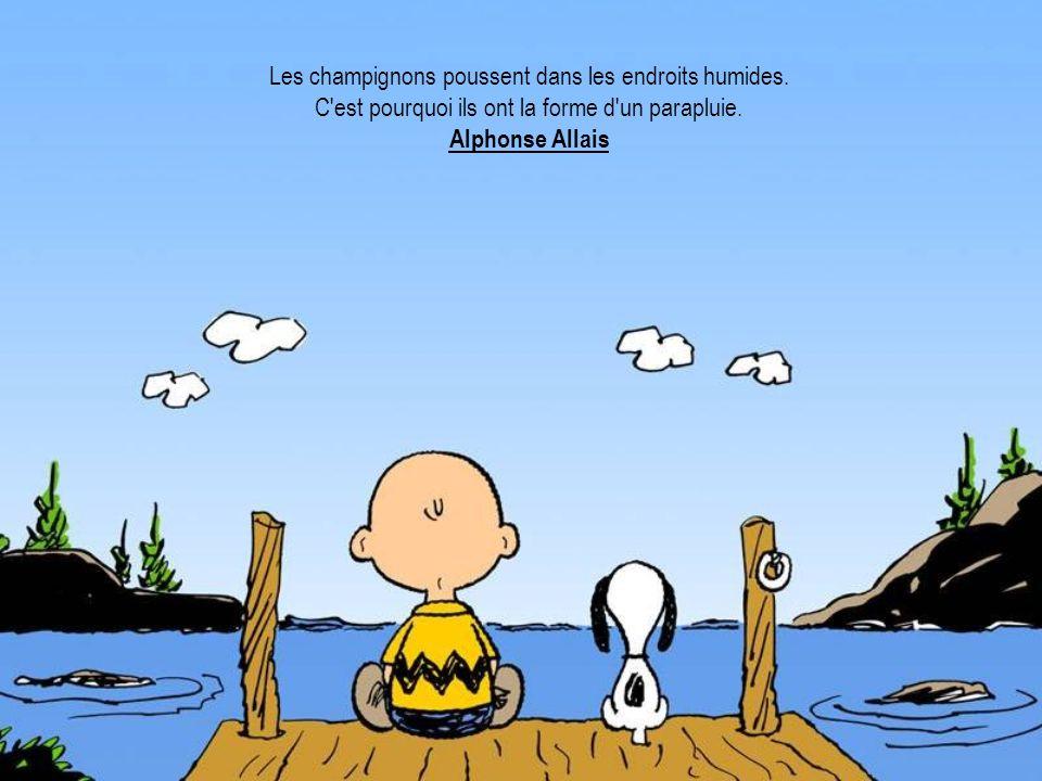 Les champignons poussent dans les endroits humides. C'est pourquoi ils ont la forme d'un parapluie. Alphonse Allais
