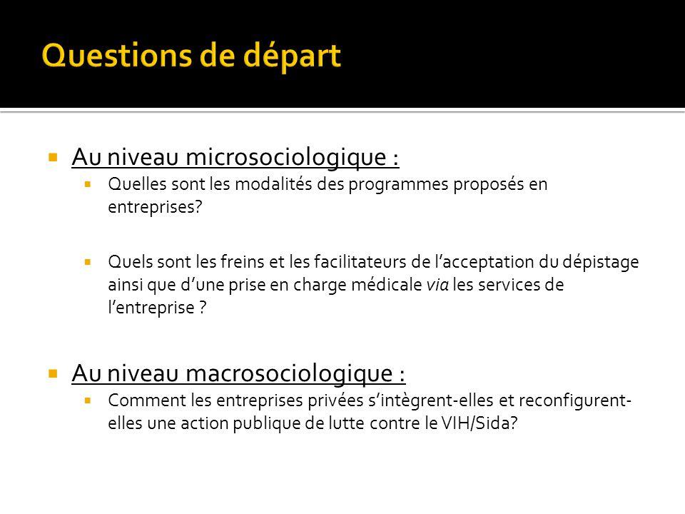  Au niveau microsociologique :  Quelles sont les modalités des programmes proposés en entreprises?  Quels sont les freins et les facilitateurs de l